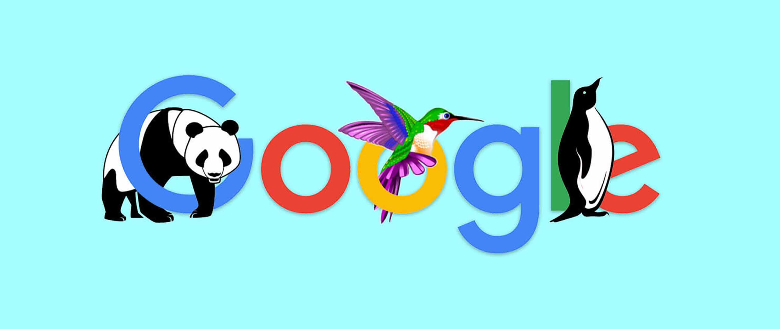 How Google Algorithms Affect Your Website