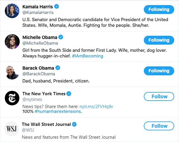 Popular Twitter Handles