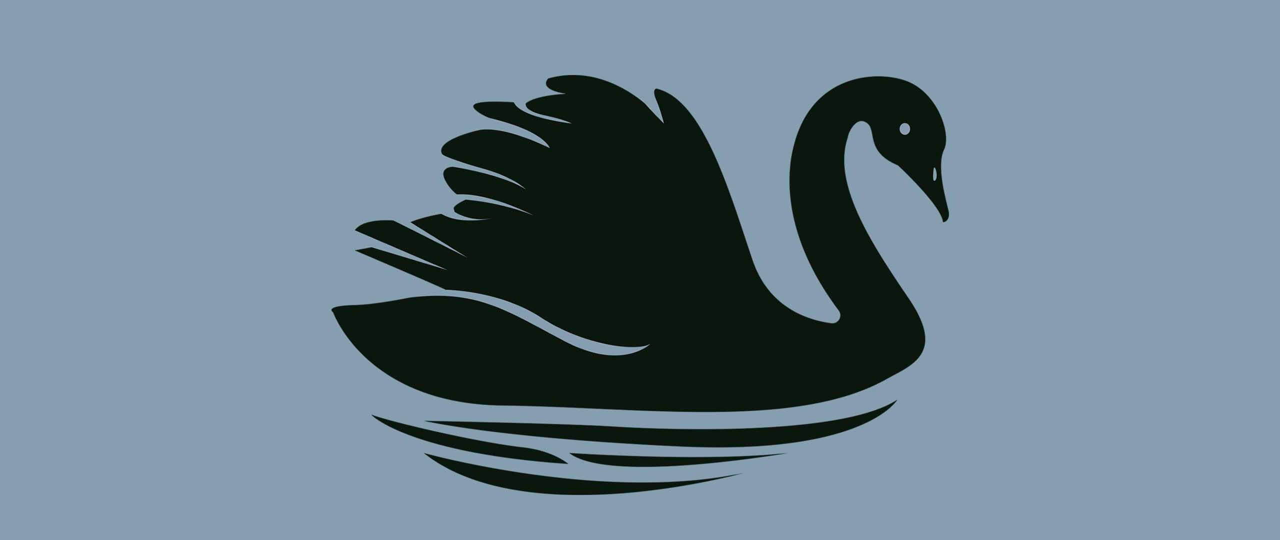 How The Black Swan Event is Affecting eCommerce in 2020